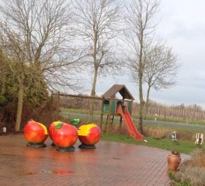 مزارع التفاح في شمالالمانيا